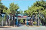 Ξεκίνησαν οι εγγραφές για τις παιδικές κατασκηνώσεις του δήμου Αθηναίων