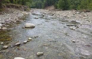Στ. Σταμέλος : Βαλκανικά Ποτάμια υπό απειλή φραγμάτων