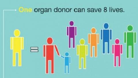 Μεγάλη καμπάνια στα Χανιά για την προώθηση της Δωρεάς Οργάνων και των Μεταμοσχεύσεων