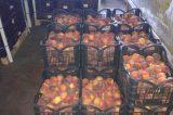 Διανεμήθηκαν 23 τόνοι(!) ροδάκινα στο δήμο Πλατανιάς