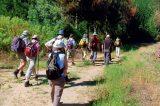 Πεζοπορικές διαδρομές  στα Χανιά