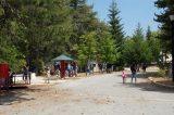 Ξεκίνησαν στην Καλαμάτα οι αιτήσεις για τις κατασκηνώσεις Αγίας Μαρίνας