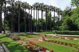Φυτικά Μνημεία χιλιάδες αιωνόβια δένδρα στον Εθνικό Κήπο