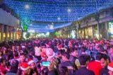 Πρωταγωνιστεί και φέτος  τα Χριστούγεννα , το Περιστέρι