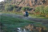 Ξεκινούν στην Κρήτη και  ψεκασμοί για τα κουνούπια