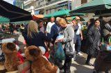 Διανέμει χάρτινα φαρασάκια σε ιδιοκτήτες σκύλων ο δήμος Πειραιά