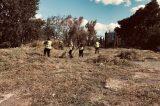 Με εντατικούς ρυθμούς οι καθαρισμοί και οι αποψιλώσεις οικοπέδων στο Μαρούσι
