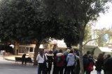 Δωρεάν ξεναγήσεις επισκεπτών του Ηρακλείου διοργανώνει ο Δήμος του