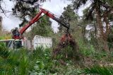 Πολύ σύντομα στους πολίτες ο Βοτανικός Κήπος του Γεωπονικού . Ξεκίνησαν οι εργασίες