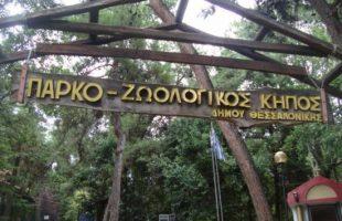 Ηλ. Στραχίνης  :Αξιοποίηση του Ζωολογικού Κήπου Θεσσαλονίκης ως Wildlife Park και καταφυγίου εγκαταλελειμμένων εξωτικών ζώων